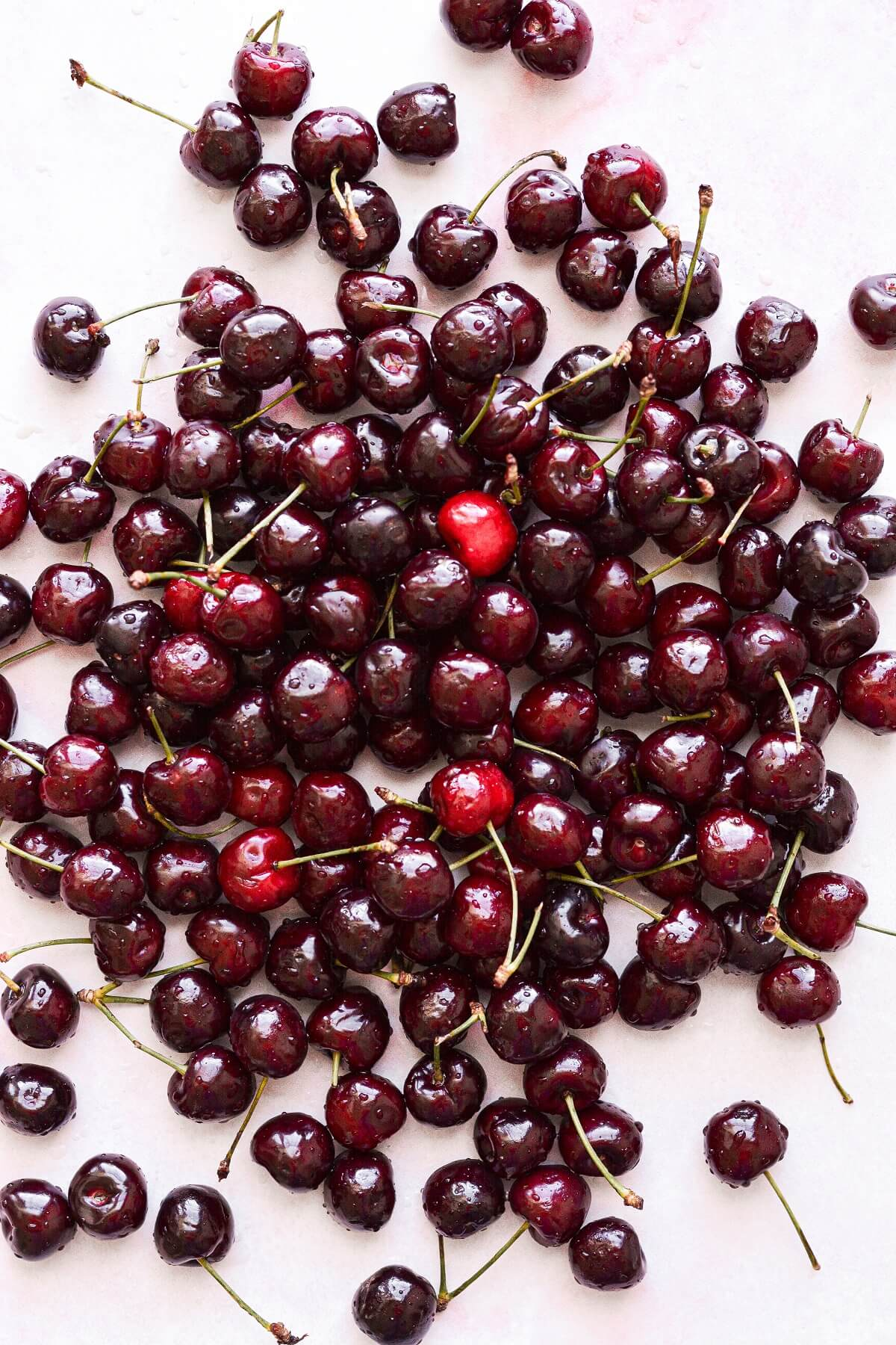 Fresh cherries covered in water droplets.